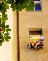 scent: sunshine (anna_bee) Tags: light living spring prague praha laundry czechrepublic everyday vinohrady