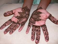 swati bridal mehndi (kenzilicious) Tags: wedding party bride indian marriage afghan bridal henne henna mehendi bodyart mehndi heena kenzi mehandi