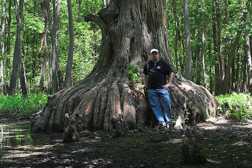 Big Cypress 2