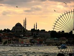 good evening istanbul (H e r m e s) Tags: blue sea seagulls birds turkey boats evening türkiye istanbul mosque marmara karaköy goldenhorn haliç