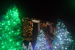 Magical Forest + Marina Bay Sands (Yukkuriko) Tags: singapur singapore bearbeitet christmaswonderland gardensbythebay magicalforest marinabaysands