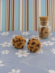 100% inedible chocolate chip cookies (Shay Aaron) Tags: food cake bread miniature cookie oven chocolate salt stove bakery chip syrup minifood peanutbutter crunch dollhouse        clayfood