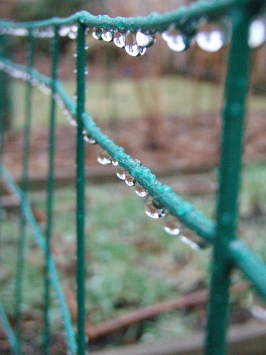 fence droplets