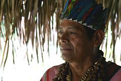 Juan Flores Salazar (Lorna Li) Tags: flores peru amazon rainforest juan ashaninka salazar curandero mayantuyacu pucallpa maririmagazine lornali juanfloressalazar httpmaririnet httplornalicom httpwwwmaririnetcontentview1339