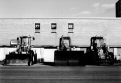 Government Tractors : Project365 : Photo 85 (grahamcase) Tags: blackandwhite oneaday photoaday canonae1 tractors pictureaday project365 project36585 governmentofnewfoundlandandlabrador project36504222007