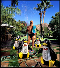 Leslie Nielsen with 7 inflatable penguins (Coogan Photo) Tags: celebrity 6x6 film water beautiful wow fun penguins flickrbadge funny az hasselblad inflatable moviestar actor paradisevalley coogan leslienielsen comedic dynalite strobist anawesomeshot dancoogan cooganphotocom