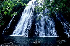 FSM - Beautiful Pohnpei (BoazImages) Tags: ocean white green nature water beautiful topv111 landscape island waterfall pond natural pacific fresh exotic tropical fsm micronesia swimm pohnpei firsttheearth worldwaterfallssurvey southpacificmicronesia