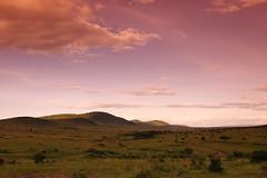 Finding Neverland | vol. II (| HD |) Tags: africa road sunset 20d nature canon landscape finding kenya path hills safari mara hd neverland darwish hamad masai cokin