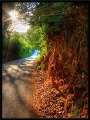 Strada della selva (otrocalpe) Tags: road street country selva campagna hdr marche flares raggi ancona castelfidardo abigfave otrocalpe