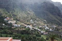 DSC_0061_med (TheFamilySpace) Tags: mountainside gomera terracing vallegranrey