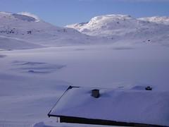 IMGP0231 () Tags: snow haukeli