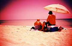 ((Loli)) Tags: pink light urban music sun art film beach peru composition analog photography design lomo lca xpro lomography perfect day fuji cross time contemporaryart contemporary crossprocess fine grain x personas human albumcover pro 100 fotografia process rodrigo ideas humano picnik alternative cayo violeta sensia peruvian fotografo peruano contemporaneo finearts composicion composiciones alternativo innovative artefino analogo fotografoperuano unbrilla coloresfuertes inovador mavila rodrigocayo artecontempoaneo
