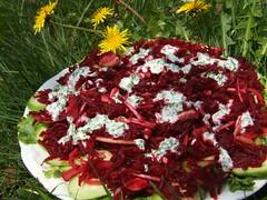 Tidy Chaos Salad (Lazy Kangaroo) Tags: salad cucumber lettuce yoghurt onion oliveoil parsley beetroot applewine