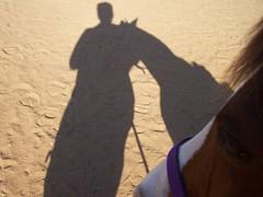 Spirit (Montgomery Area Nontraditional Equestrians (MANE)) Tags: volunteers class whinnie stjamesumc intrustor