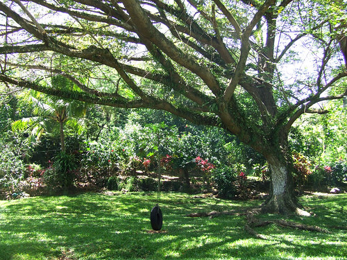 Saipan, A'be's garden - tire swing