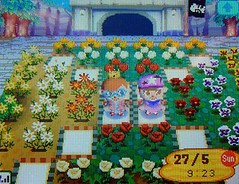 Say Cheese! (Chrischang) Tags: nintendo ds animalcrossing nds acww