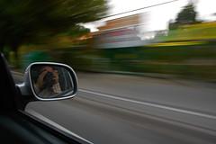 Fast Run Shooting (DarkFrame) Tags: italy selfportrait rome roma italia nikond70s autoritratto eur 2for2 50club