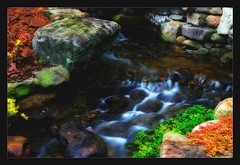 Garden stream, backyard zen (Java Cafe) Tags: longexposure topf25 water garden landscape interestingness bravo rocks stream f30 zen slowshutter arkansas flowing waterblur hotsprings flowingwater interestingness8 i500 top20longexposure 25faves abigfave favoritegarden goldenphotographer diamondclassphotographer flickrdiamond explore11april07
