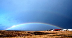 somewhere over the rainbow... (nanna lind) Tags: sky clouds iceland rainbow explore sland sk himinn cwd regnbogi lftanes cwd142 cwdweek14 heilsubros