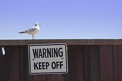 keep_off