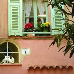 Rita Crane Photography:  French Riviera / facade / building / shutters / window / Doves, Old Town Menton (Rita Crane Photography) Tags: windows france home taggedout facade cotedazur stock 7 villages explore shutters menton frenchriviera stockphotography wondow squarephoto 500x500 blueribbonwinner supershot abigfave supershots ritacrane goldenphotographer oldfishingvillage friendlywelcome colorsofthemediterranean villagewindows ritacranephotography wwwritacranestudiocom
