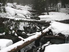 Snowy inlet