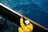 07105D1438 (Paulgi) Tags: man portugal yellow work boat fisherman europe castelo fisher octopuss viana minho 17mm paulgi acidesign