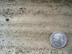 Tower Hill Maar Deposits