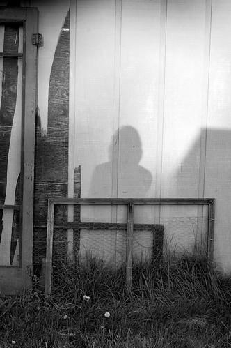 shadows and doors