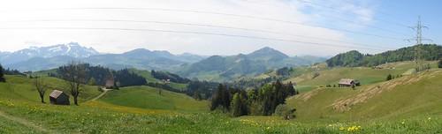 Saul oberhalb Appenzell