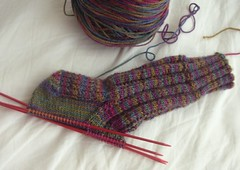 """Roza's Socks"" progress as of 5/15/07"