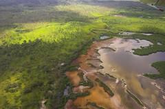 Wetlands at Kubin