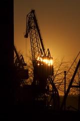 Sunrise Through a Crane (helppo) Tags: morning silhouette docks sunrise finland helsinki crane