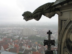 Gargoyle jumping from the cathedral of Ulm (Ulmer Münster) - by @t.