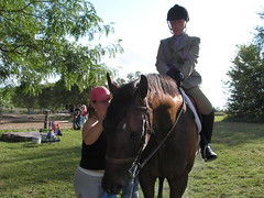 (cel630) Tags: horse groom bay waiting horseshow thoroughbred buttonfly gelding bruster ottb