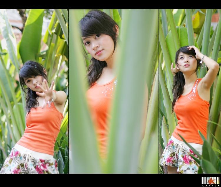Summer-Daphny