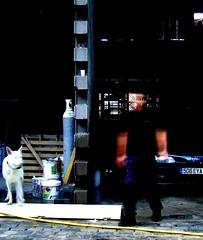 l'homme au loup blanc (lorenzoo) Tags: gardela virela2 virela3 virela4 virela5 virela6 virela7 virela8 virela9 virela10 virela1