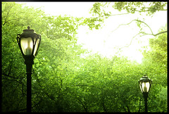Better Together (ilina s) Tags: two green nature togetherness daylight streetlamps pair questfortherest blueribbonwinner colorphotoaward ilinas
