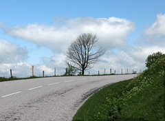 Vosges 02