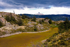 Near Campo Grey (Feffef) Tags: chile patagonia green trekking ilovenature cloudy hiking torresdelpaine