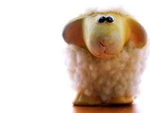 756830_lambs_17