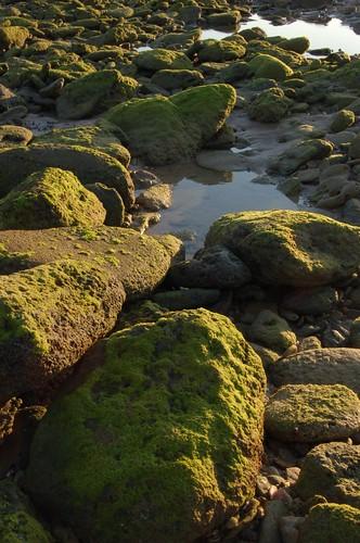 Piedras Arrecife en Los Caños - Mike Dumonceau