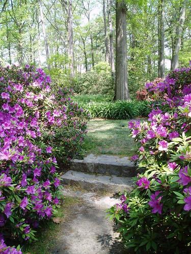 Botanical_Gardens_022