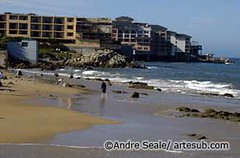Monterey 06©