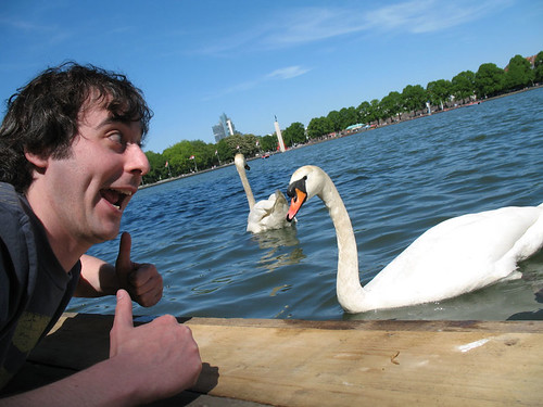 Ride a with swan