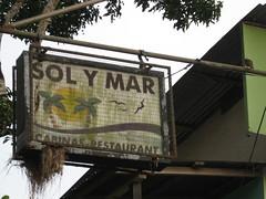 Social Flycatcher Nest (ian t taylor) Tags: bird costarica nest socialflycatcher cahuita
