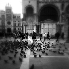 waiting time (Jersey Yen) Tags: world venice people bw italy blur 120 film square holga lomo italian waiting afternoon kodak free stranger traveller kind softfocus doves monochromia vp6041