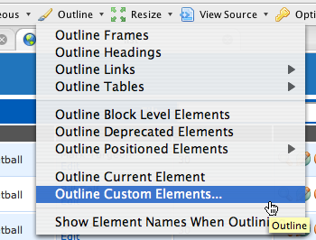 "The ""Outline Custom Elements"" feature in Chris Pederick's Web Developer Toolbar."