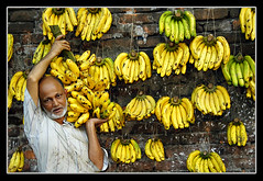 Not Bitter at all [..Dhaka, Bangladesh..] (Catch the dream) Tags: old portrait color green frutas yellow wall fruit market bongo progress oldman banana mercado future sell bengal bangladesh bazar bangla prosperity vegetales bengali bangladeshi bangali sellinggoods travelerphotos kaptanbazar fotogezgin catchthedream gettyimagesbangladeshq2