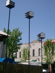 Bird houses at River Market (dslwc) Tags: sky sun moon clouds